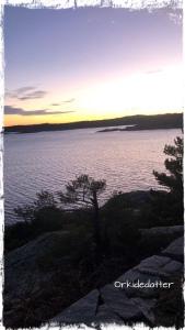 Kristiansand Odderøya vennskap venninne Norge