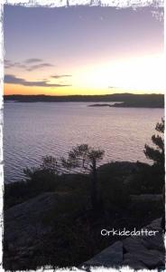 Kristiansand Odderøya venninne venner
