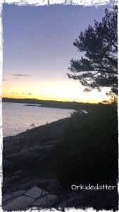 Kristiansand Odderøya Norge venninner vennskap