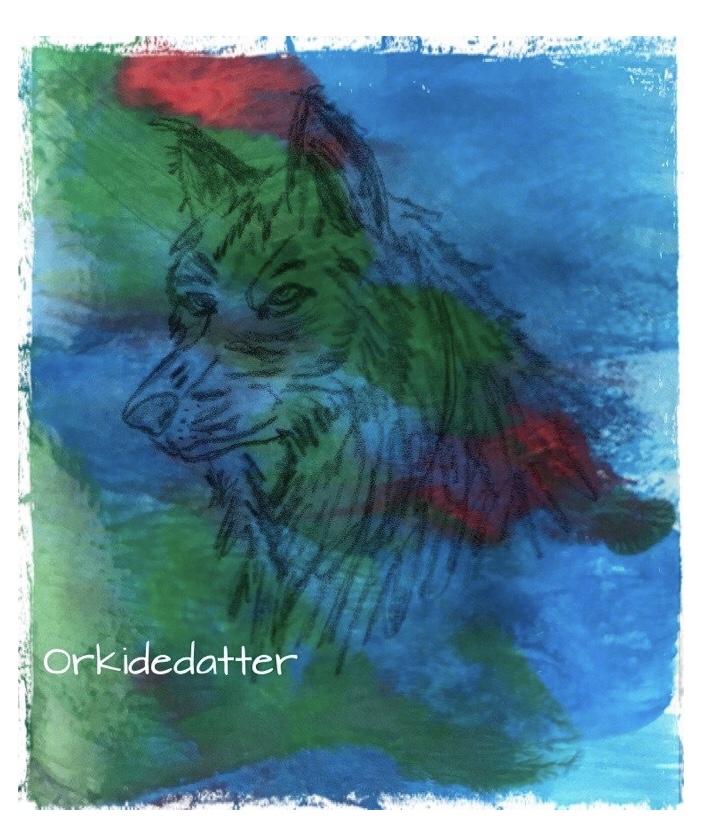 Poem dikt running with wolves mental health løper med ulvene cop with life livsmestring
