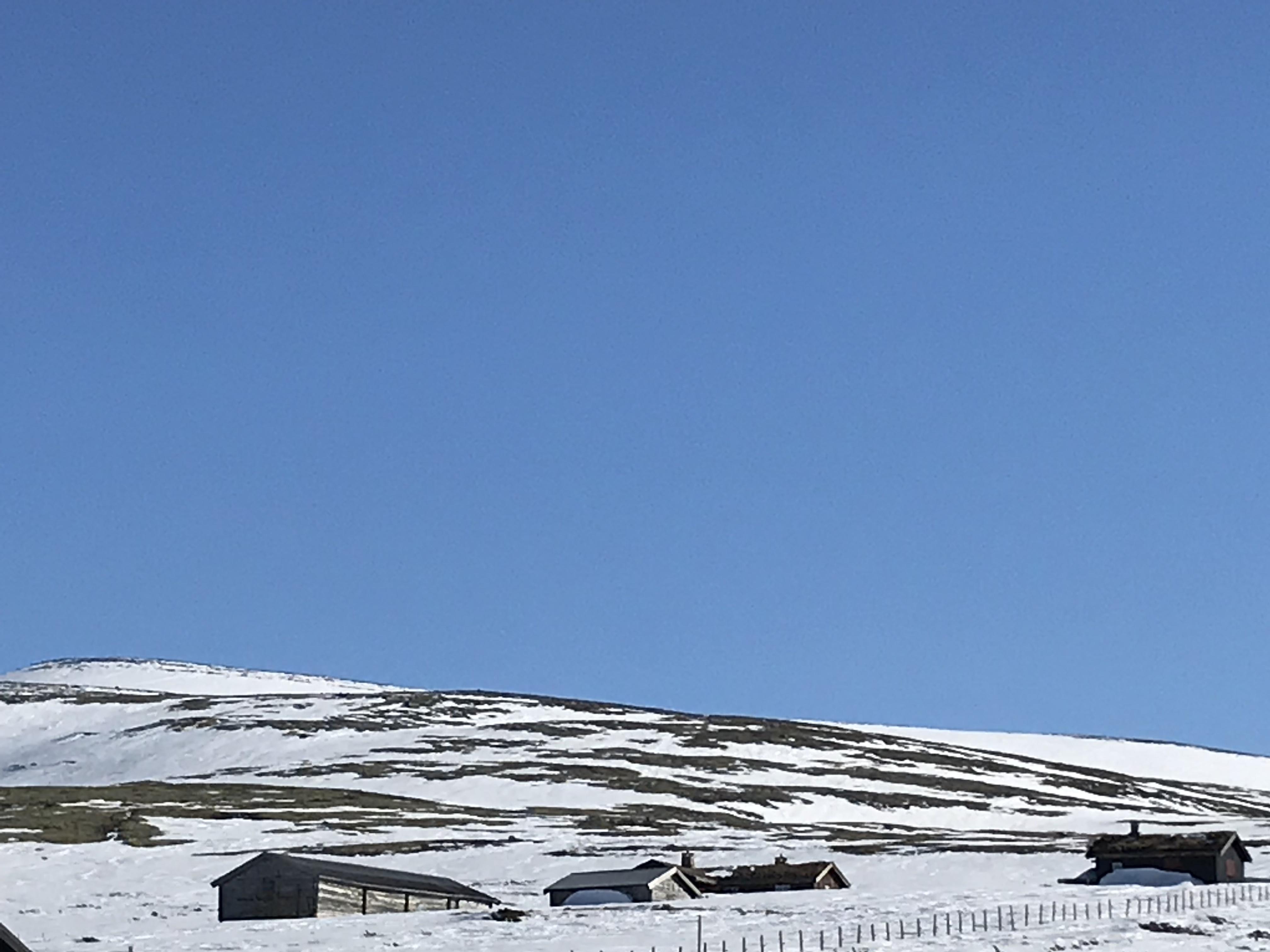 Norwegian nature, Norwegian blogger